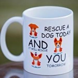 Adopt a rescue